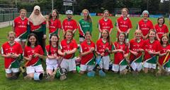 Hurling and Camogie